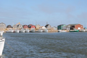 Malpeque Harbour